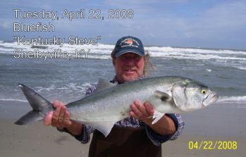 Tradewinds bait tackle ocracoke nc fishing report archive for Ocracoke fishing report