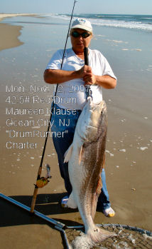 Tradewinds bait tackle ocracoke nc fishing report archive for Surf fishing nj license