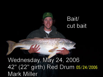 Tradewinds Bait & Tackle, Ocracoke NC, Fishing Report Archive